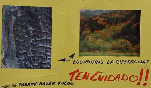 Cartel Para El Cuidado De Los Recursos Naturales   apexwallpapers.com